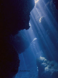 Inside a cave on Niue by Andrew Macleod 